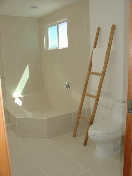 Puertas Para Regadera Baño:Baño recamara principal